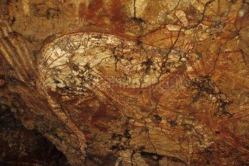 Aboriginal rupestral painting of a kangaroo Australia