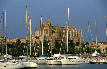 Palma de Mallorca view on the harbour and the gothic cathedral