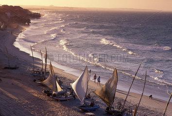 Jangadas  seaworth sailing rafts used by fishermen of northeastern Brazil. Cear__ State shore  fishing  tropical beach  travel  tourism  Brazil.