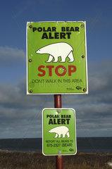 Manitoba  Churchill  Polar bear alert