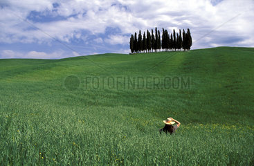 Tuscany  Val d__Orcia