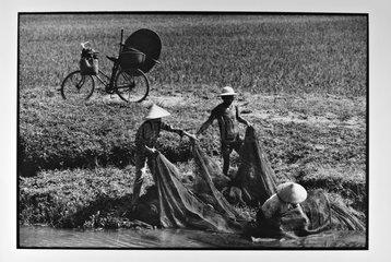 Fishermen of crayfish in the canals of rice paddies Vietnam
