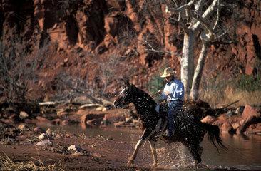 Arizona cowboy on horseback is crossing a stream in Red rock country Sedona