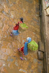 Beautiful color of sari costumesr of woman from above on cobblestones in village of Bhaktapur a town near Kathmandu Nepal