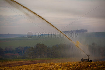 Irrigation of recently cultivated sugarcane field with vinhoto  a byproduct of the ethanol industrial process  Brazil.