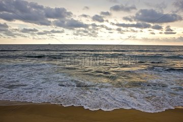 Beach of the Indian Ocean Colombo Sri Lanka