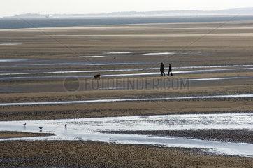 Terschelling  people walking the dog on the Noordsvaarder tidal plate