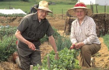 Retired elderly couple enjoy working in a retired communiyt in garden for relaxation