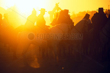 Horsemen of the brotherhood of Jerez during the pilgrimage to El Rocio which leads through the National Park Coto Donana