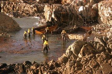 Nettoyage après la marée noire de l'Erika en France