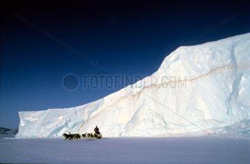 Attelage devant un iceberg dans le fjord Alexandra