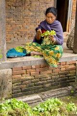 Beautiful colorful photo of woman selling vegetables near market in village of Bhaktapur a town near Kathmandu Nepal