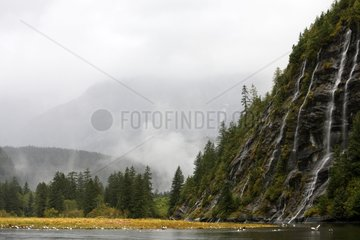 Mussel bay cascade Swindle Island British Columbia