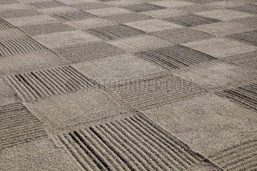 Gravel grid in a Zen Garden - Kyoyo Japan