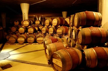 Barrels of wine cellars in the Vergelegen wine estate