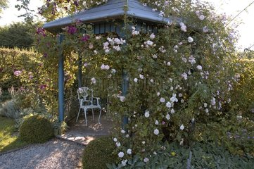 Gloriette avec rosiers grimpants Jardin Ter Heyveld Belgique
