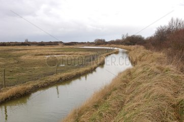 River in Orme bay Ouistreham France