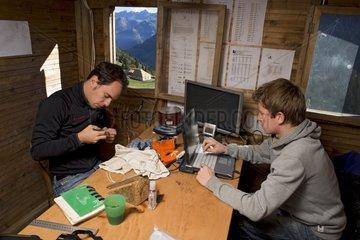 Ringing captured Bird - Col de Bretolet Swiss Alps