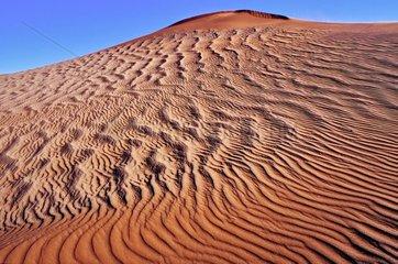 Dunes in the Desert of Namib Sossuvlei Namibia