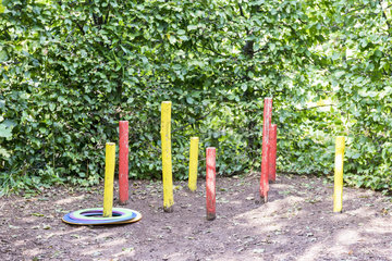 Game of skill in a garden in summer  Moselle  France