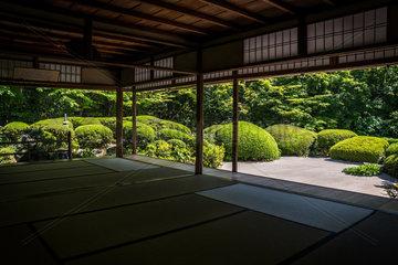 Azalea in Shisendo temple  Kyoto  Japan