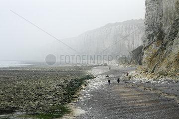 Cliff break on Yport Beach  Normandy  France