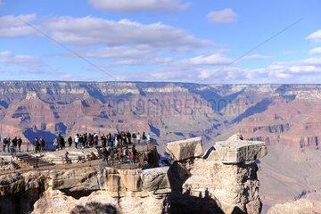 Tourists on Grand Canyon Scenic Lookout  Grand Canyon National Park  Arizona  USA