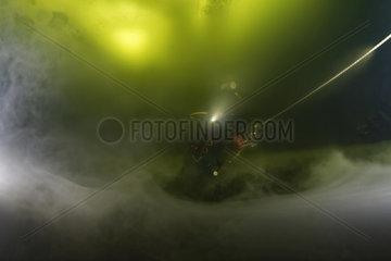 Underwater fog  Decaying aquatic vegetation forming a layer of fog  White Sea  Nilmoguba  Republic of Karelia  Russia