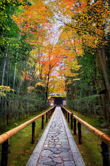 Entrance of Daitoku-ji temple in autumn in Kyoto Japan