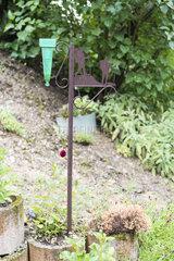 Green plastic rain gauge in a garden  France