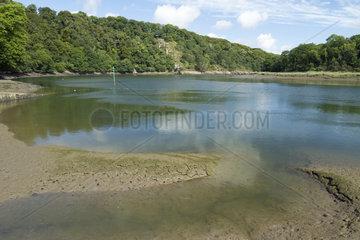 Trieux river at La Roche Jagu  Ploezal  Cotes-d'Armor  Brittany  France