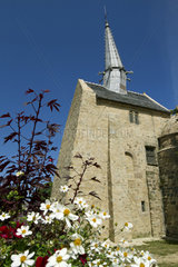 Cosmos flowers in front of the Saint-Gonnery chapel  Plougrescant  Cotes-d'Armor  Brittany  France