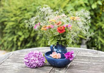 Bouquet of Zinnias on a garden table in summer  Pas de Calais  France