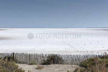 Salty and dry marsh  Camargue  France