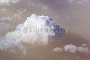 Cumulus over a sandstorm in southern Algeria