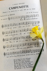 Text and music of an old song La Campenotte  name gives to the Daffodil (Narcissus pseudonarcissus) in the region  song created in 1891 by Paul de Resener  Franche Comte  France