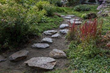 Japanese path in a garden