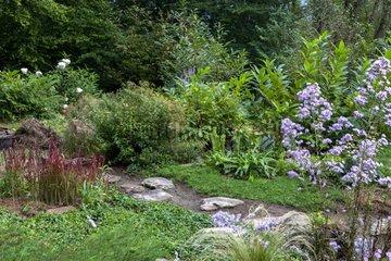 Japanese path in a flowered garden