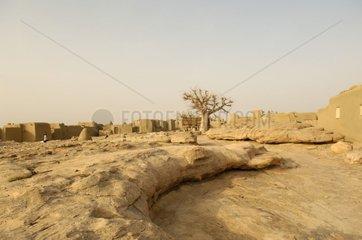 Dogon village close to the Bandiagara cliff Mali