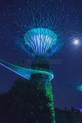 Super tree with the moon light in the garden of the bay park. Singapour