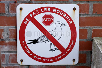 Information board concerning the ban on feeding gulls in Mers-les-Bains  Picardie  France