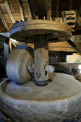 The mill  departmental museum of the Mountain  hamlet of Chateau Lambert  Haut du Them  Haute Saone  France