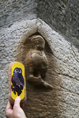 Gingerbread owl from Mulot and Petitjean and carved owl against a wall of the Notre Dame church  local tradition : make a wish by stroking the bird  rue de la Chouette  Dijon  a UNESCO World Heritage Site  Cote d Or  France