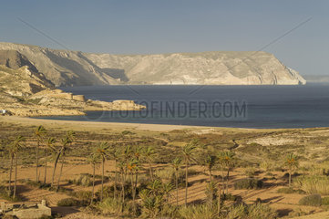 The Playazo beach with palm trees and the San Ramon castle on the left. Nature Reserve Cabo de Gata-Nijar  Almeria province  Andalusia  Spain.