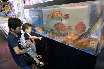 fish restaurant in japan