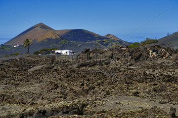 La Gería  region highly valued for its peculiar wines  Island of Lanzarote  Canary Islands.