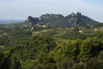 Dentelles sarrasines de Montmirail  village of Suzette  Vaucluse  Provence  France