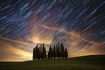 Startrail above Cypress trees in Val d'Orcia  San Quirico d'Orcia  Siena  Tuscany  Italy