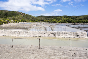 Basins of the salt marshes of Kô. Salt marshes of back mangrove. North of Grande Terre. New Caledonia.