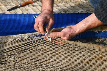Fisherman repairing his nets on the ground - Port of Toulon France